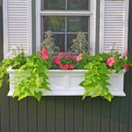 Mayne 4 ft Yorkshire Window Planter Box - White with Wall Mount Brackets