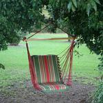 Cushioned Single Porch Swing Trellis Garden Stripe