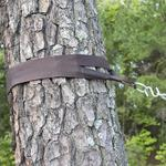 Pawleys Hammock Tree Straps