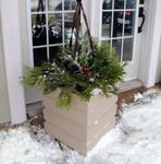 Mayne Freeport Patio Planter - Clay