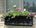 Mayne Nantucket 3 ft Window Box - Black with Decorative Brackets