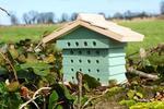 Eco Friendly Bee Hive