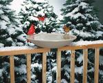 "Eco Friendly 20"" Heated Birdbath with Deck Mount"